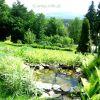 43. Nasz ogród